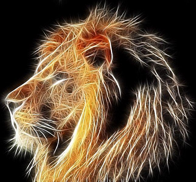 13) LION