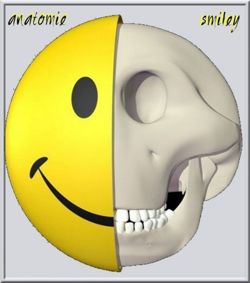 anatomie-smiley-539x610.jpg