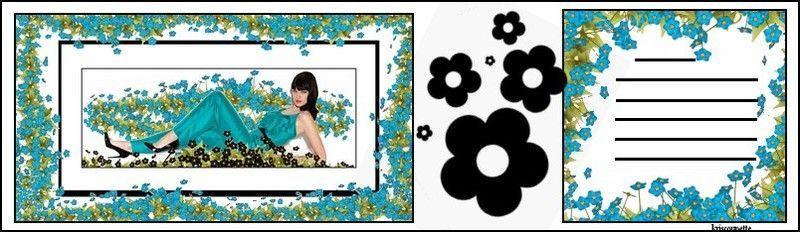 fleurs3.jpg