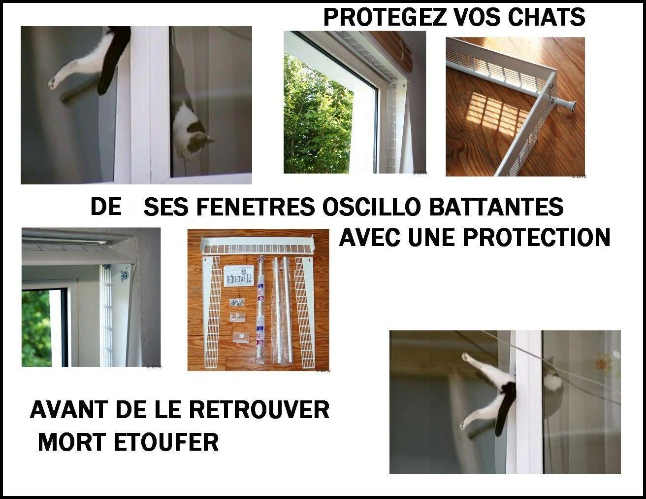 6 fenetre oscillo abattante danger pour nos chats for Fenetre oscillo battant chat
