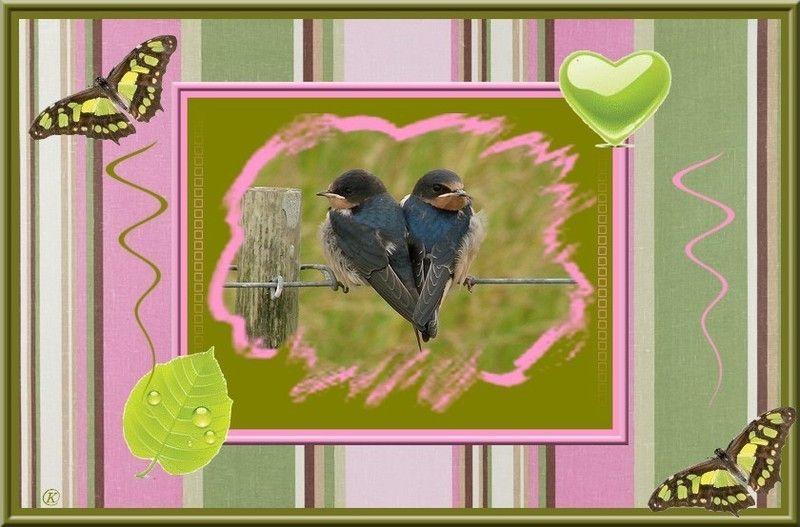 oiseau-coeur_1.jpg