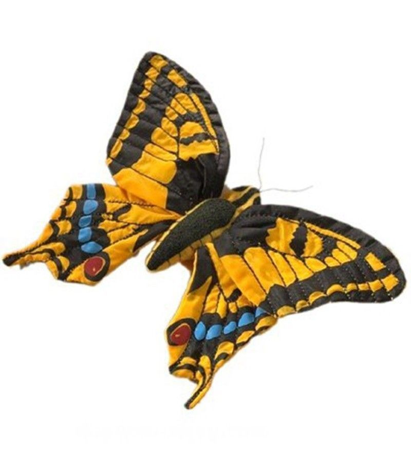 papillon_machaon_zoom.jpg