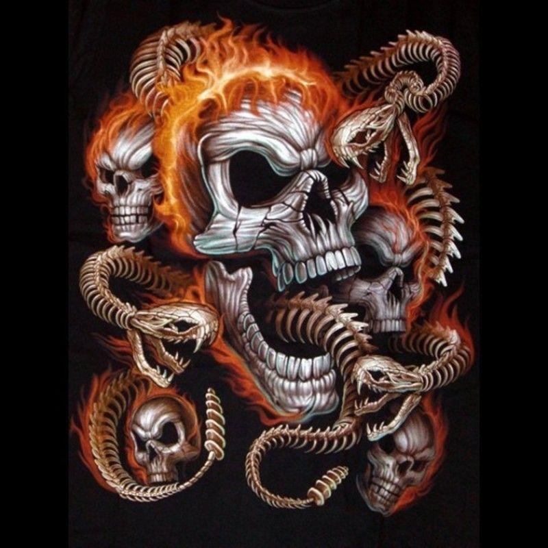 t-shirt-tete-de-mort-et-serpents0 dans fond ecran tete de mort